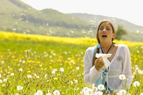 Alergia a Poléns